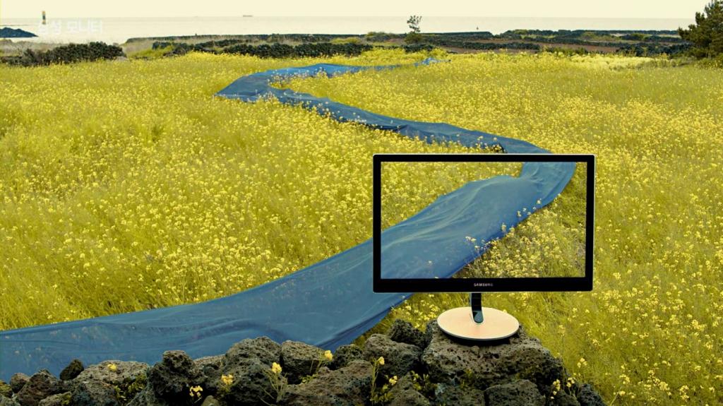 Samsung Monitor to Emulate Natural Colors