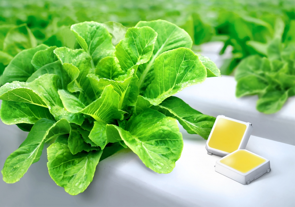 Samsung Sets New Photon Efficacy Level in White LED Packages for Indoor Farms