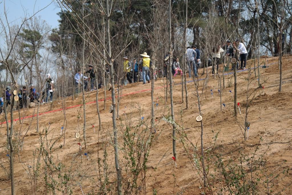 삼성전자, 탄소상쇄 숲 조성행사 참여